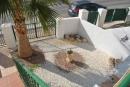 2 Bedroom 2 Bathroom Bungalow in Villamartin